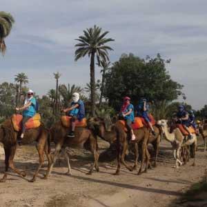 balade-chameau marrakech