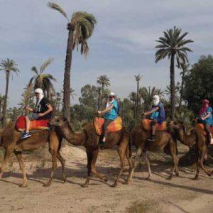 balade dos dromadaire Marrakech