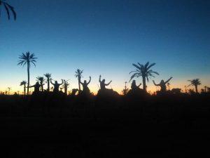 Balade à dos de Dromadaire au coucher du soleil Marrakech