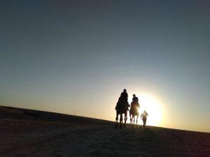 Balade en Chameau au coucher de soleil désert Agafay