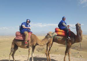 Balade en dromadaire désert Agafay