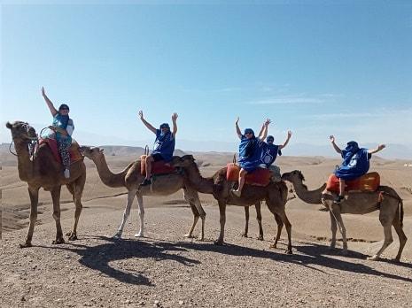 balade dromadaire désert Agafay