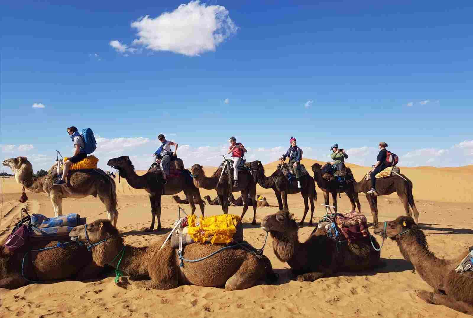 Excursion chameau Merzouga
